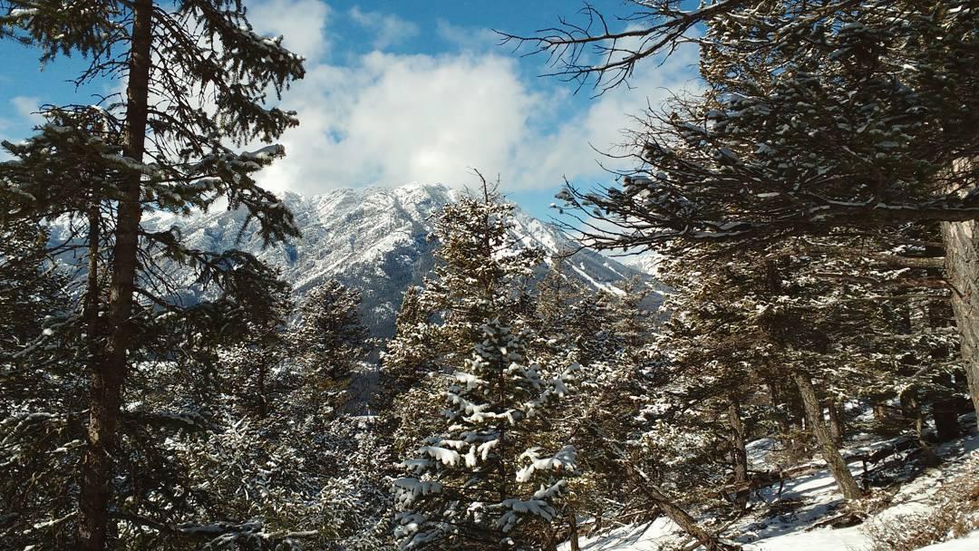 Banff_Tunnel_Mountain_02