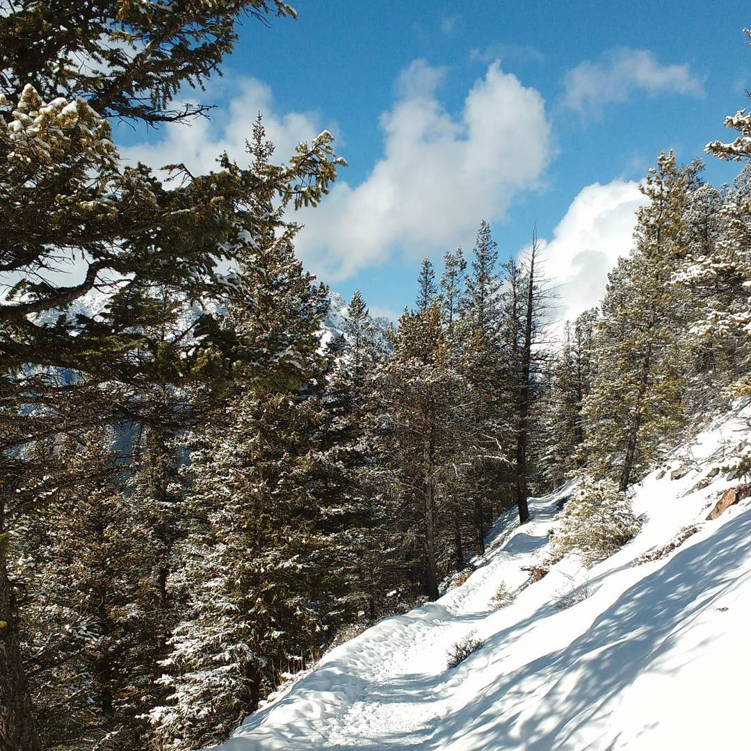 Banff_Tunnel_Mountain